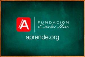 aprende.org ngo